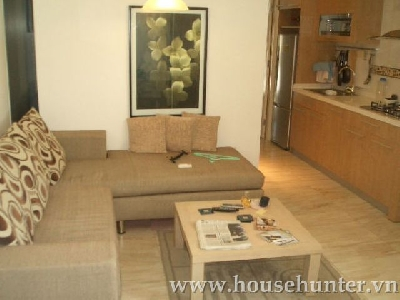 Very nice 1 bedroom apartment for rent in Binh Thanh district